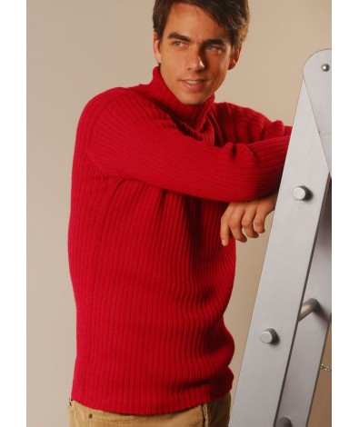 Ribbed Sweater with a Turtle Neck